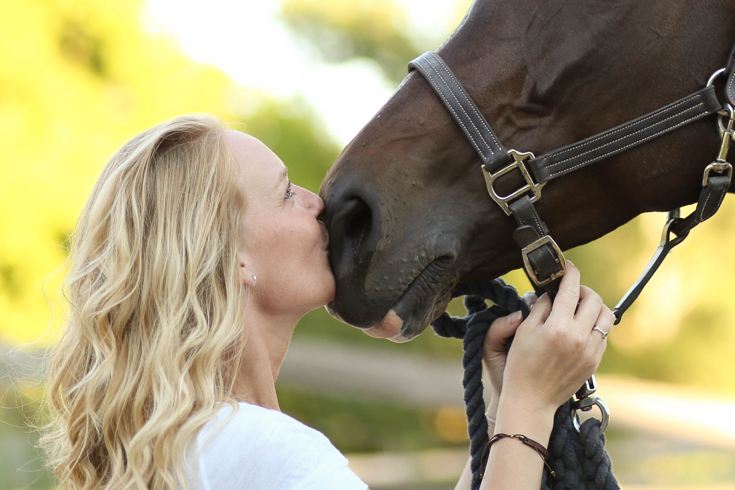 ottb equine portrait at double H stables in stillwater
