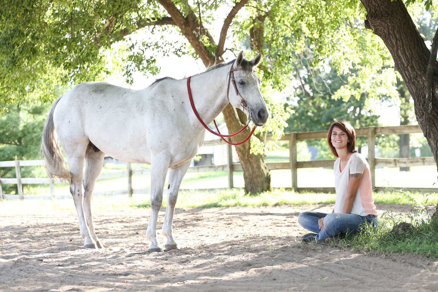 horse photography in andover minnesota