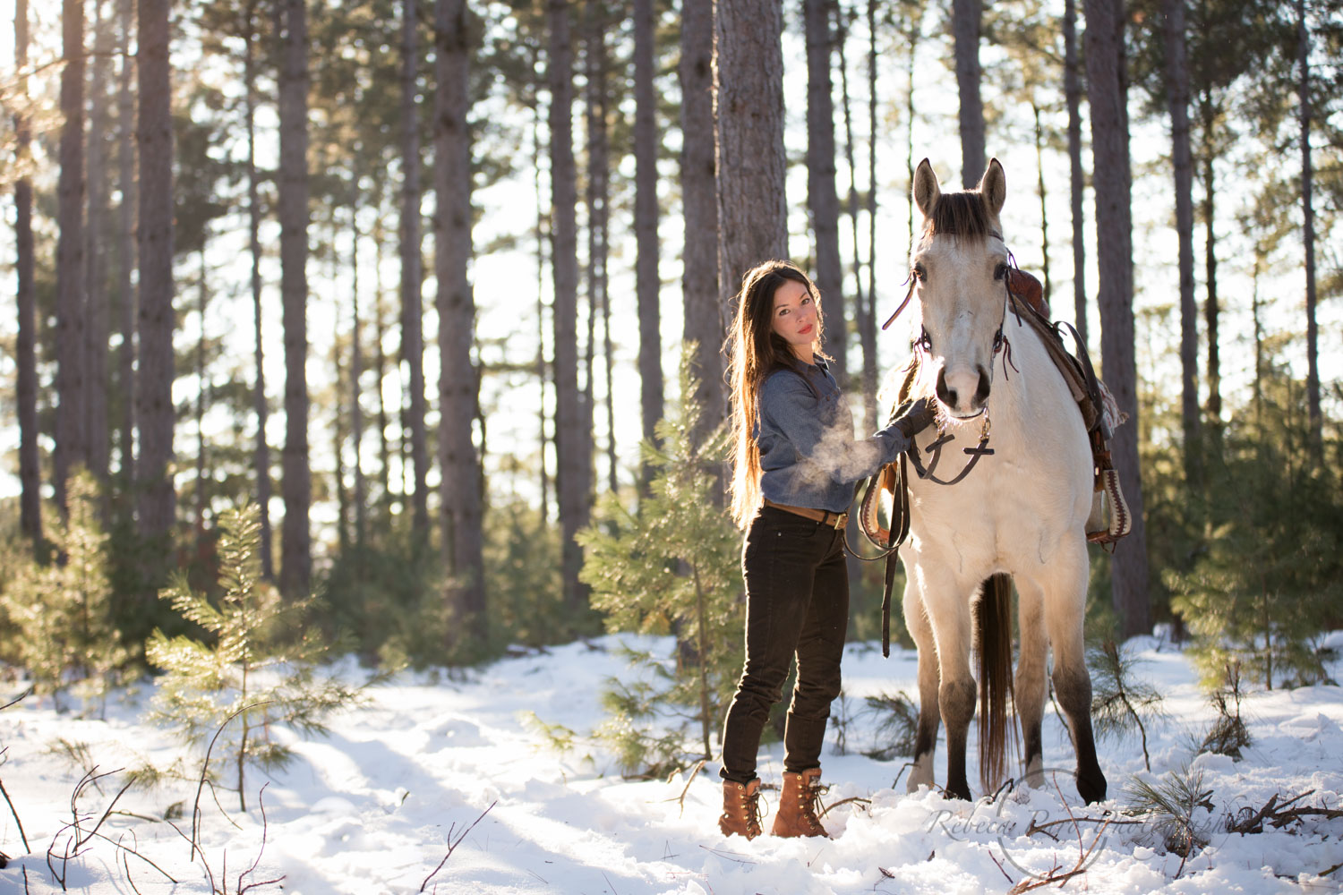 Horse woman with her horses in the woods. Minnesota horse photograher