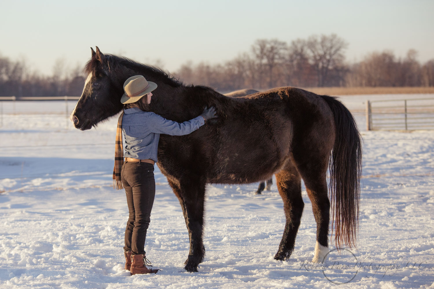 Horse woman with her horses in the pasture Minnesota horse photograher