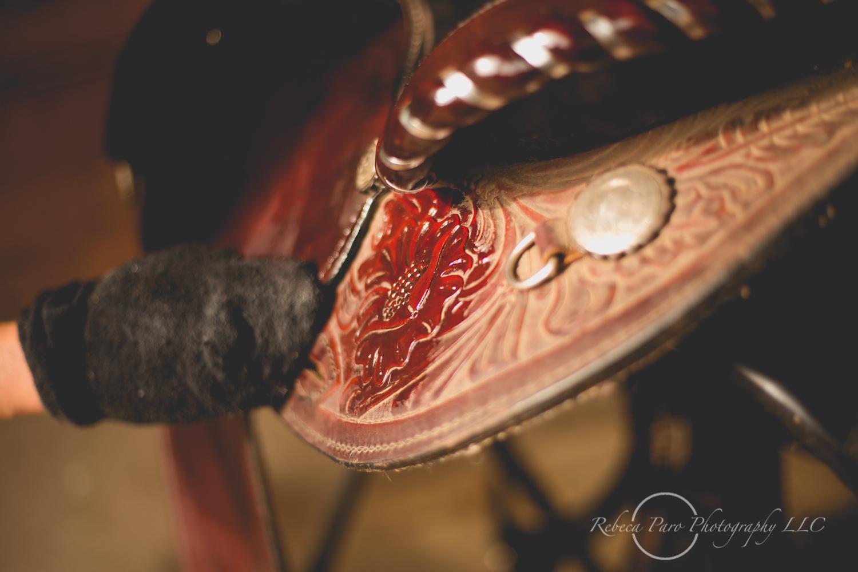 Minnesota horse photographer