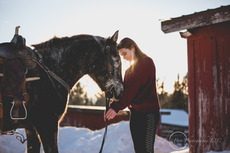Horse photographerv