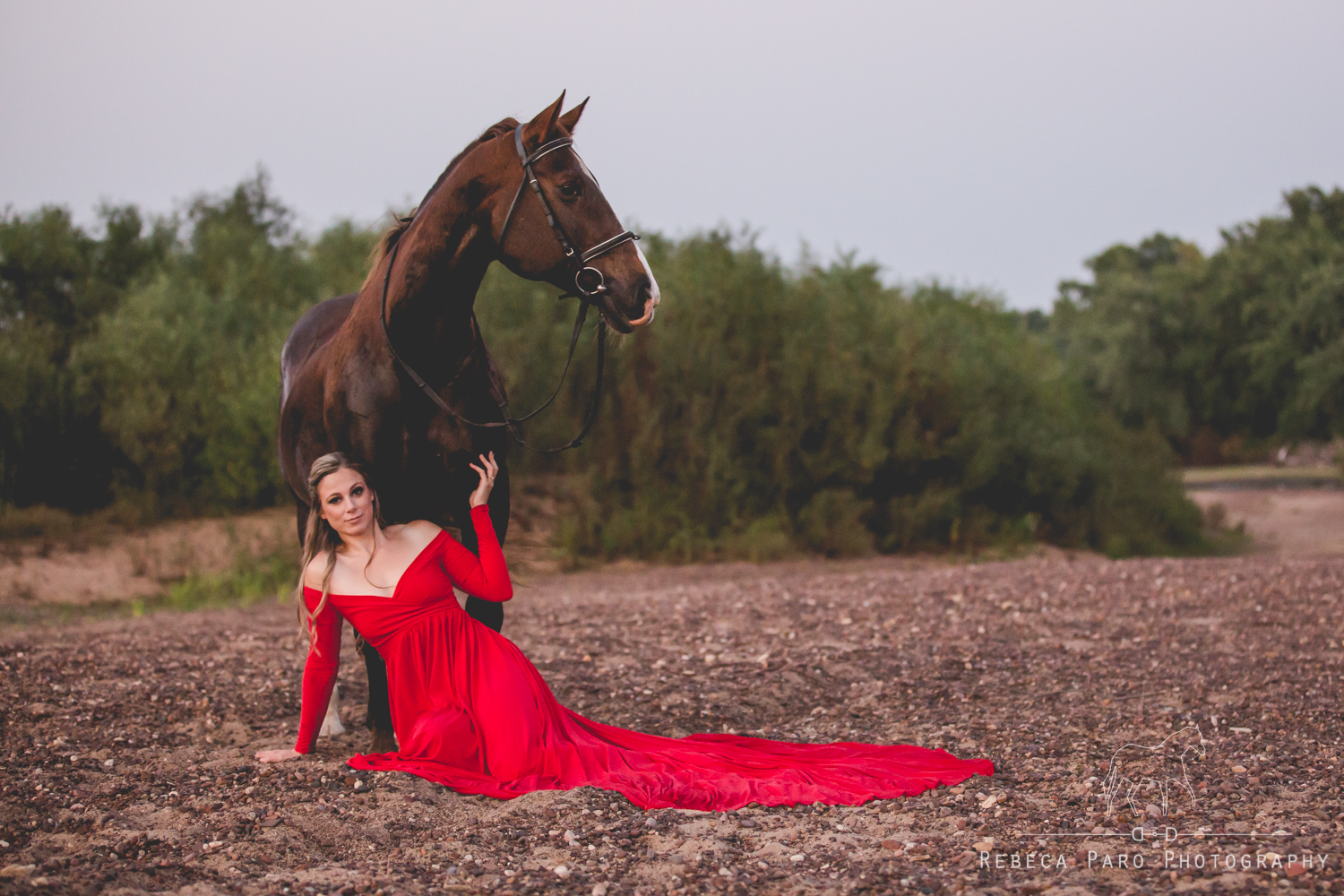 horse and red dress
