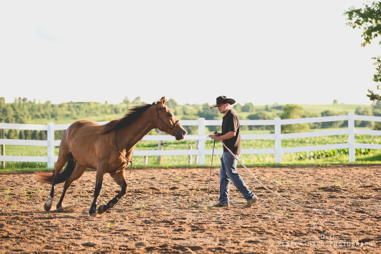 Horse trust