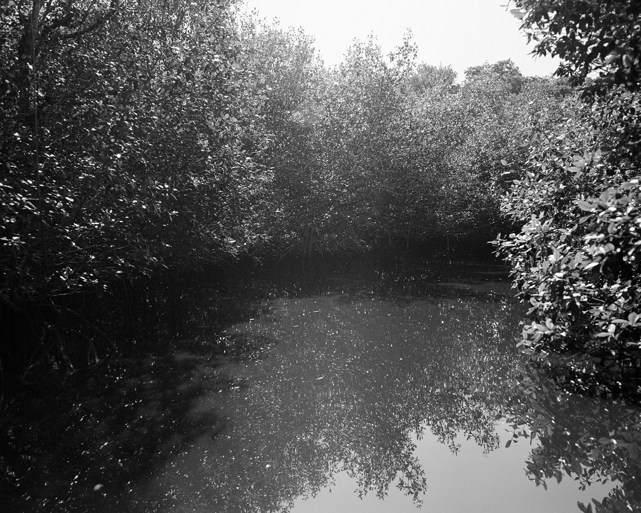 Belanger_Turner River_2002.jpg