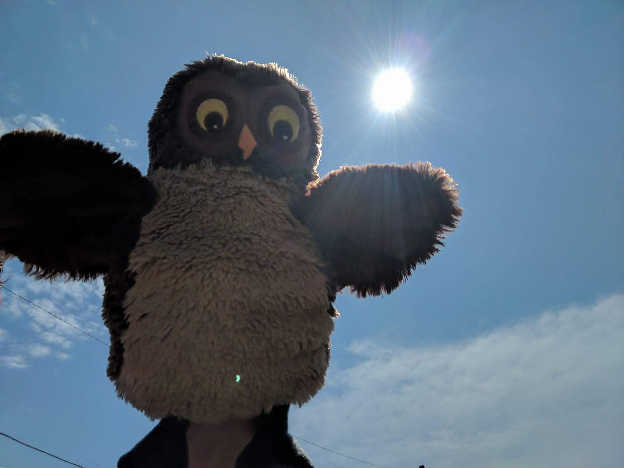 solar eclipse day 2017.jpg