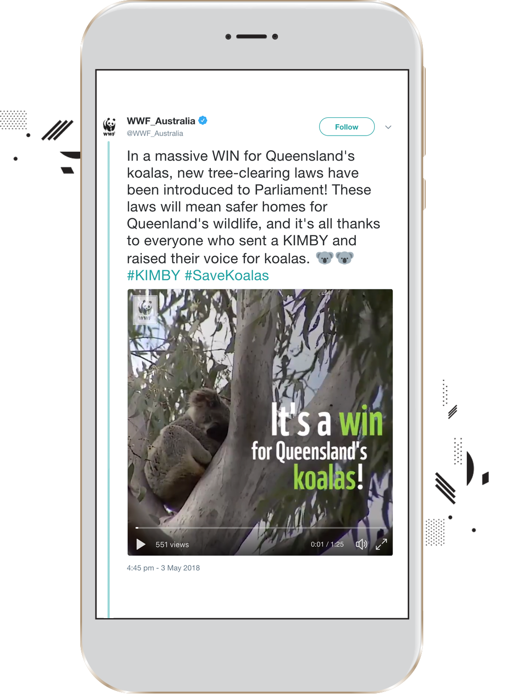 Our Campaign Resulted in Direct Change. New Tree-clearing Laws were Introduced to Safeguard Koalas -
