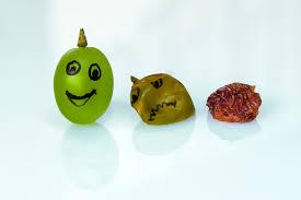 grape to raisin.jpg