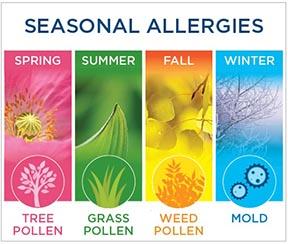 Seasonal-Allergies-4.jpg