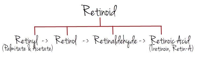 retinoid.jpg