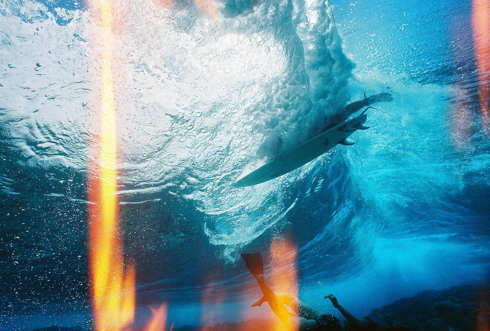 under the sea - 2048×1383.jpg