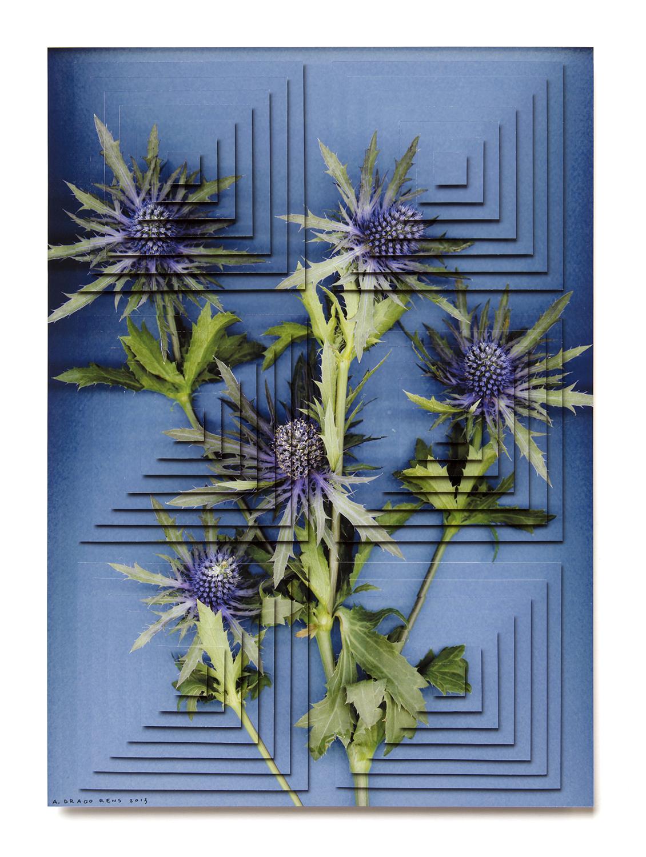 ziggurat fiori DR1.jpg