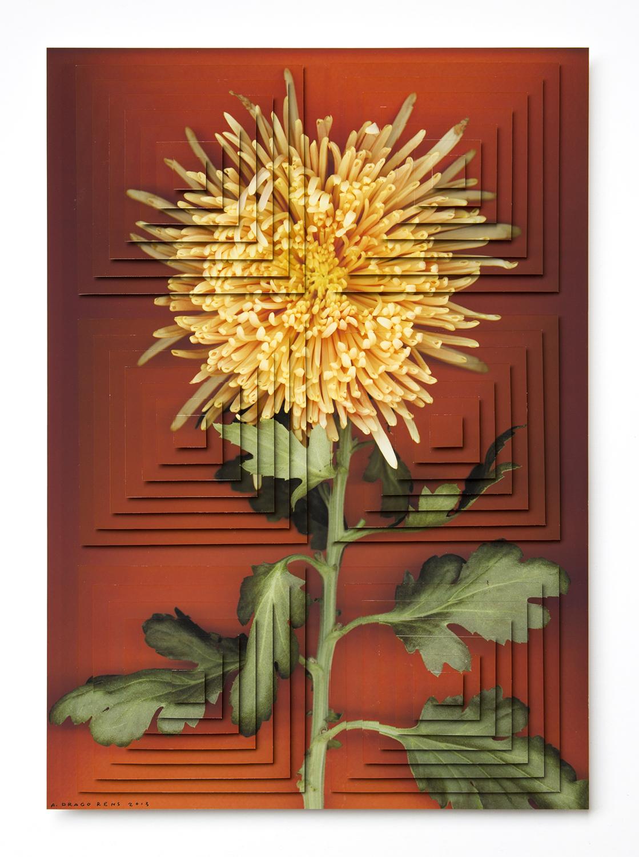 ziggurat fiori DR2.jpg