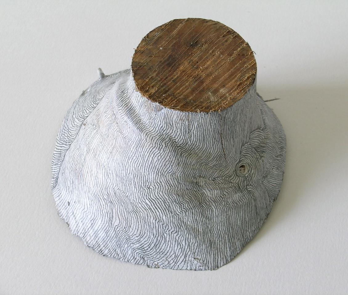 Residual Landscapes (iv)   Pine off cut, gesso & pencil, 2004