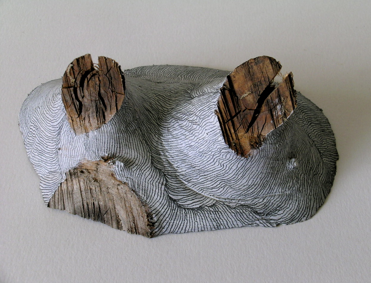 Residual Landscapes (i)   (front view), Pine off cut, gesso & pencil, 2004