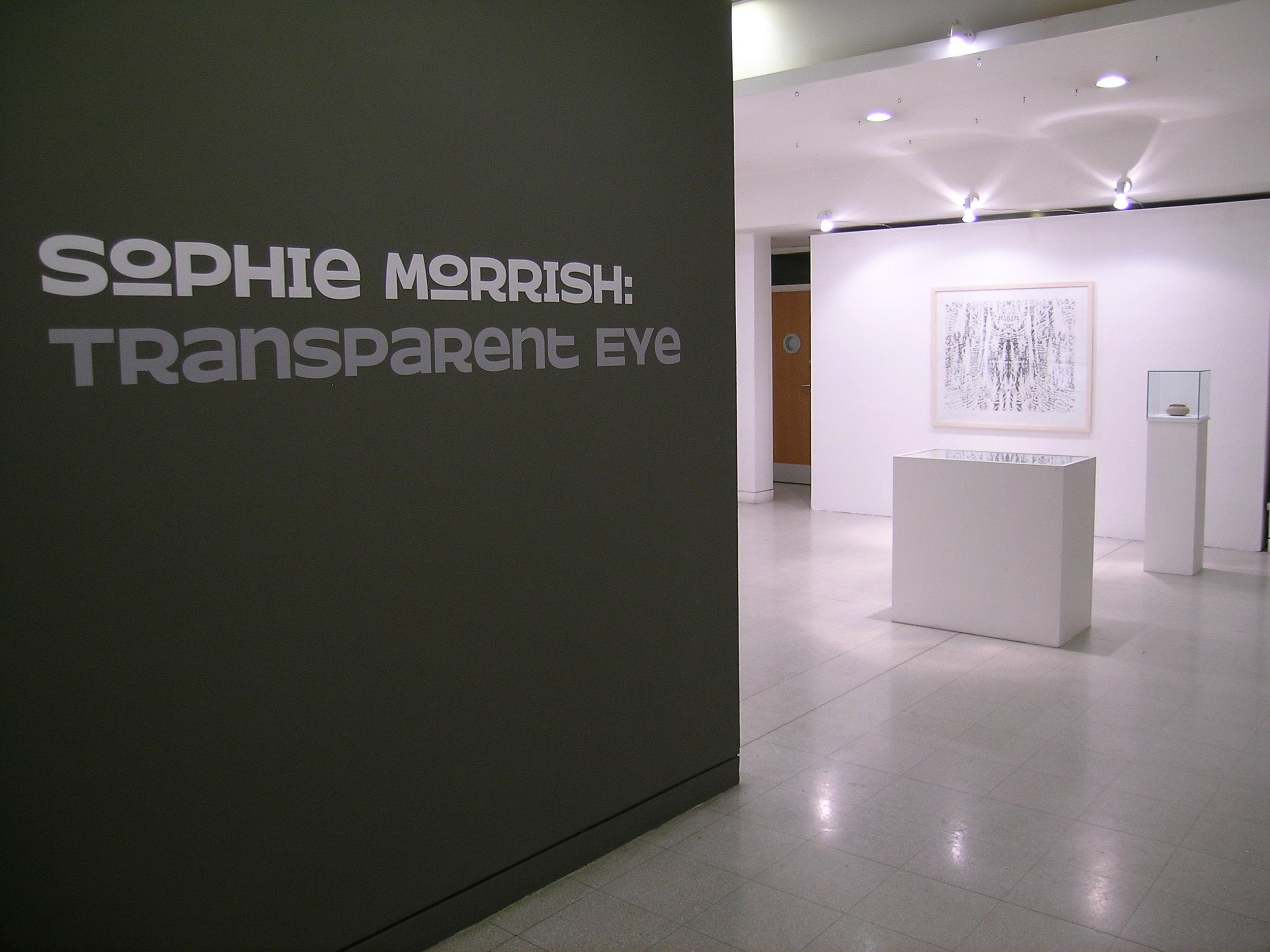 Transparent eye7.JPG