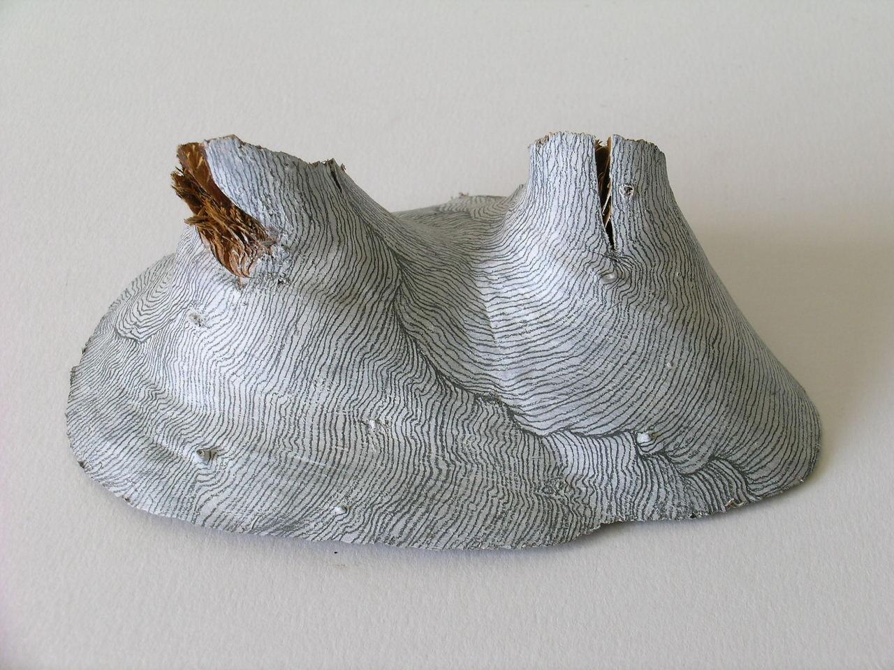 Residual Landscapes (i)   (rear view), Pine off cut, gesso & pencil, 2004