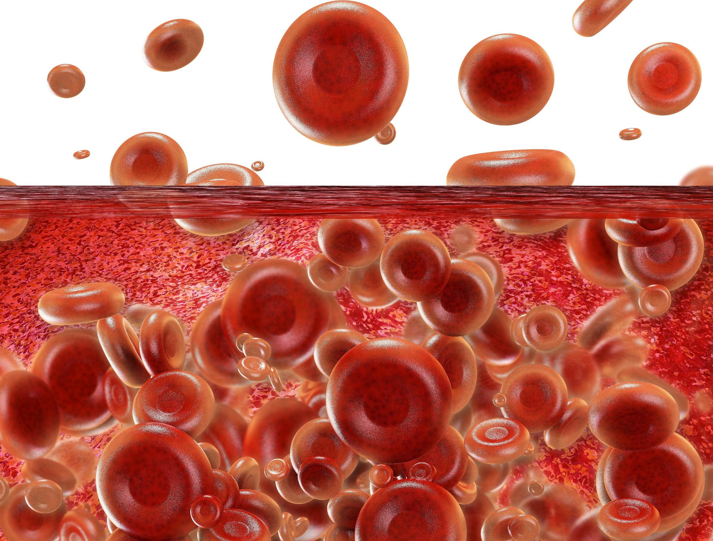 Platelet Rich Plasma Therapy - PRP