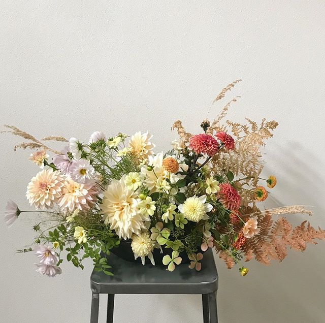 'Attraversiamo' . . #summertofall #crossingover #fallhues #dahlia  #cosmos #shirleypoppy #seasonalfloweralliance #garden #pnwgarden #pnw #seattleweddings #seattleflorist #weddingflorist #gardenwedding #flowersofinstagram #bloom #weddingseason  #weddingflowers #flowers #weddinginspiration #weddinginspo #weddingideas #floral #pursuepretty #elementsandaccents #flashesofdelight #calledtobecreative #organicflorals #visnardesign #underthefloralspell
