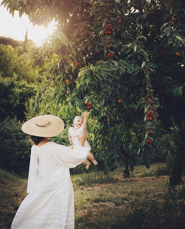 Harvest time and the the beautiful life of @annstreetstudio #wiggykit #lavenderfieldstopandskirt