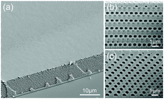 Scanning electron micrographs of material made by holographic lithography in (a) oblique view and (b, c) cross sections. (Adapted from [Chen, Geddes, et al., APL 91, 241103 (2007).].)