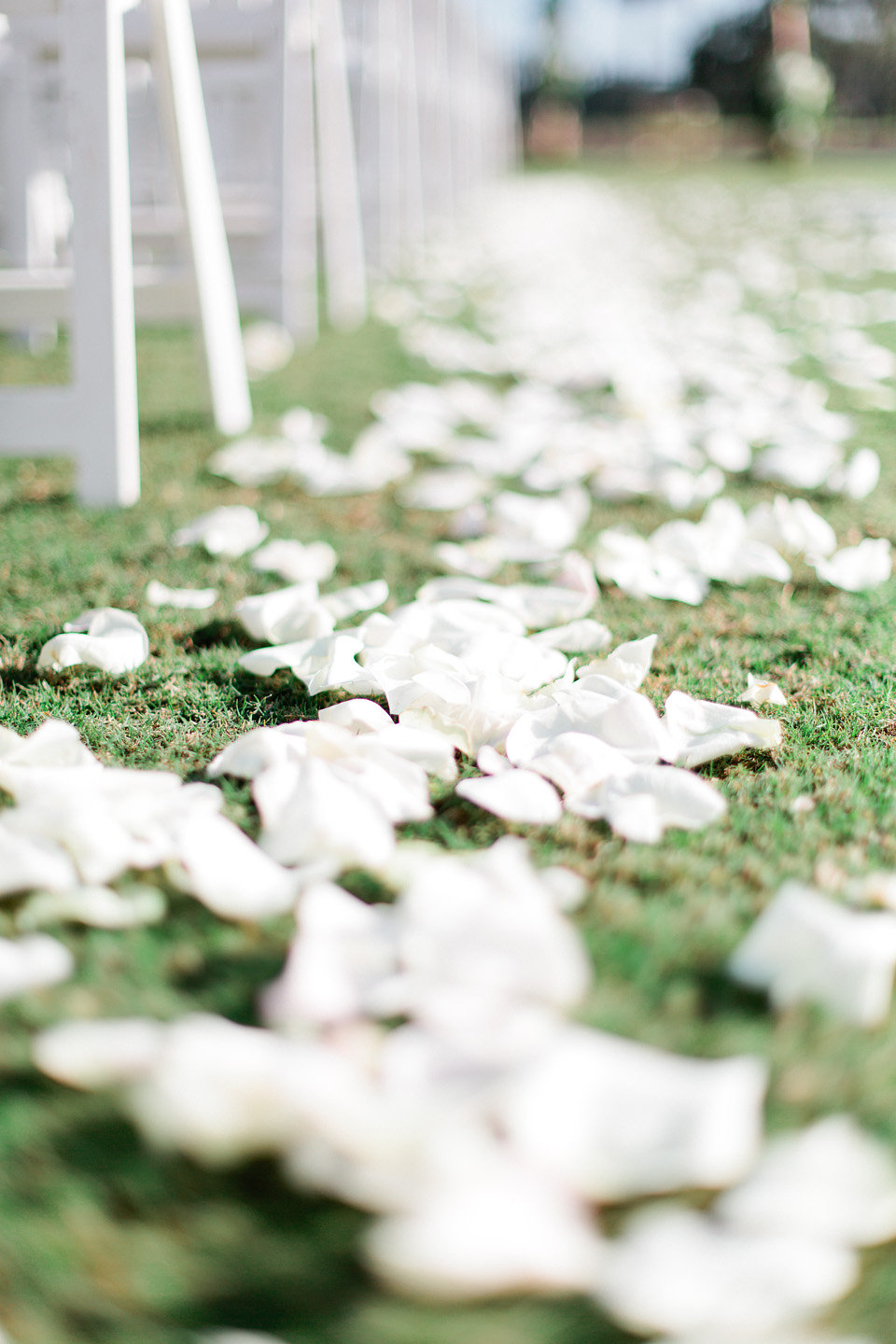 Ivory rose petals lining the ceremony aisle  Blush Wedding at TPC Sawgrass Wedding Ponte Vedra Beach  Jacksonville Wedding Planner Blue Ribbon Weddings  Jacksonville Wedding Photographer Debra Eby Photography  Wedding Ceremony & Reception at TPC Sawgrass Jacksonville
