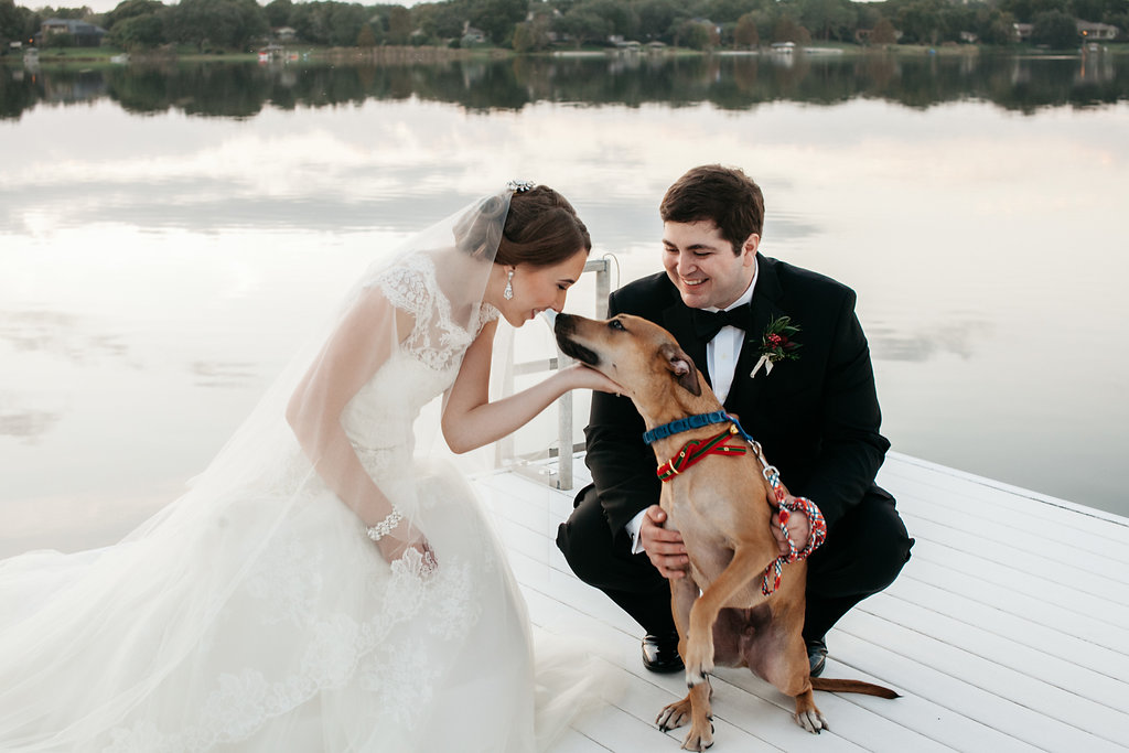 Sweet wedding kisses from their sweet puppy, Wedding Dogs