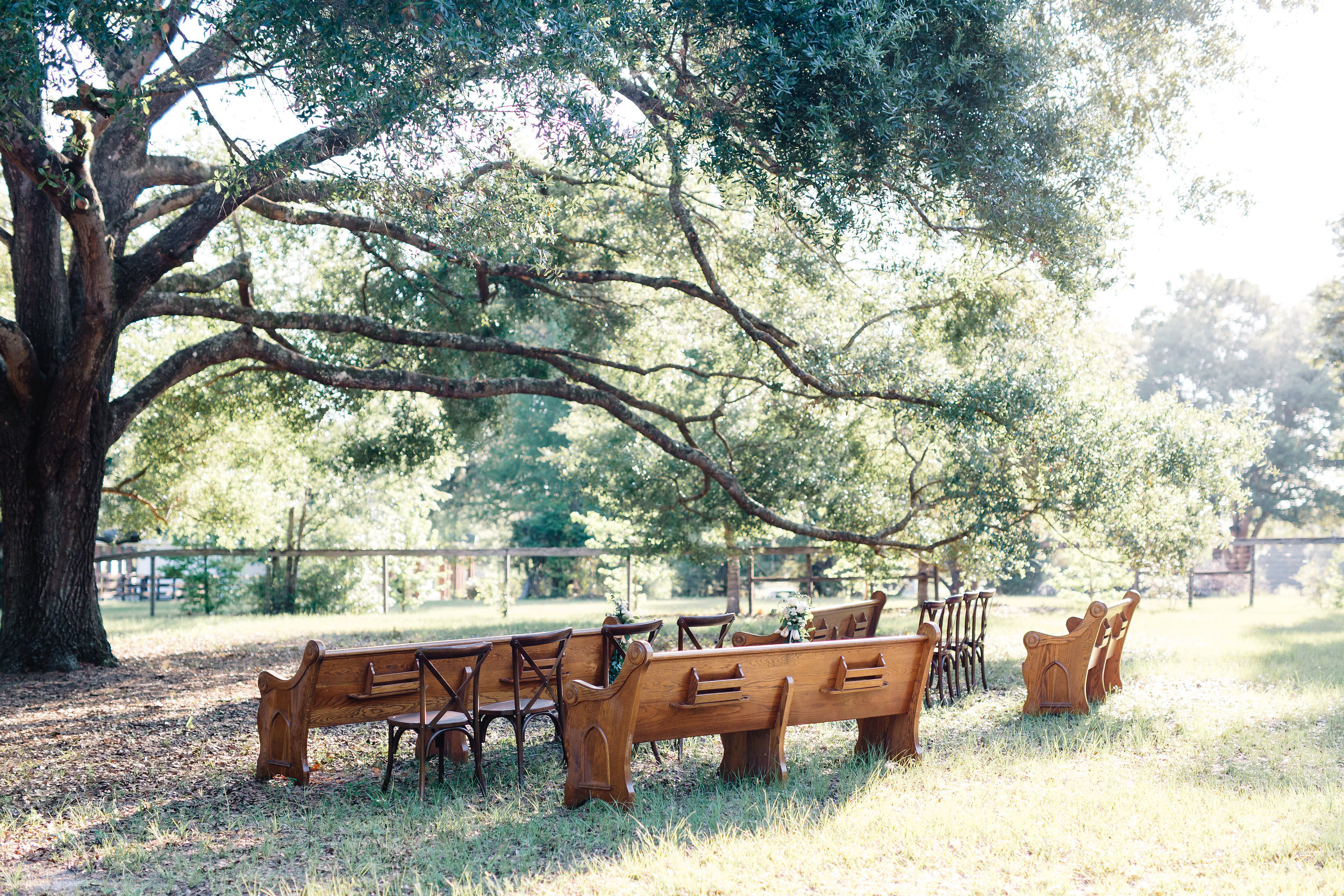 Arundel Estate Ceremony with church pews from Orlando Wedding & Party Rentals under the oak tree