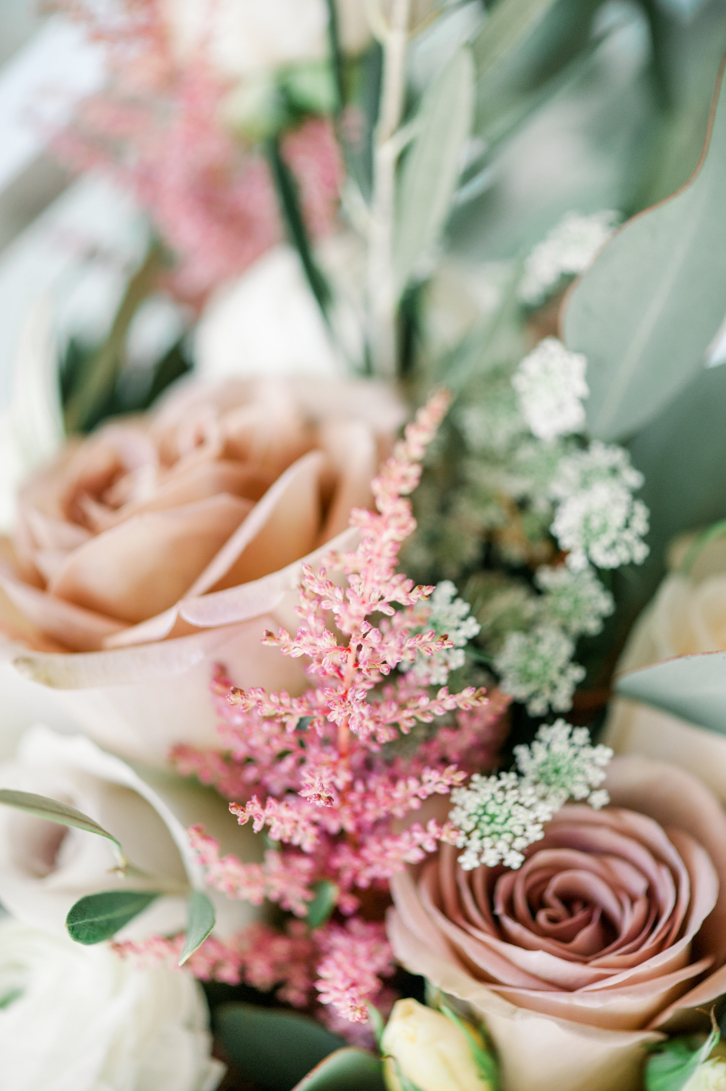Flowers REC_7431.jpg