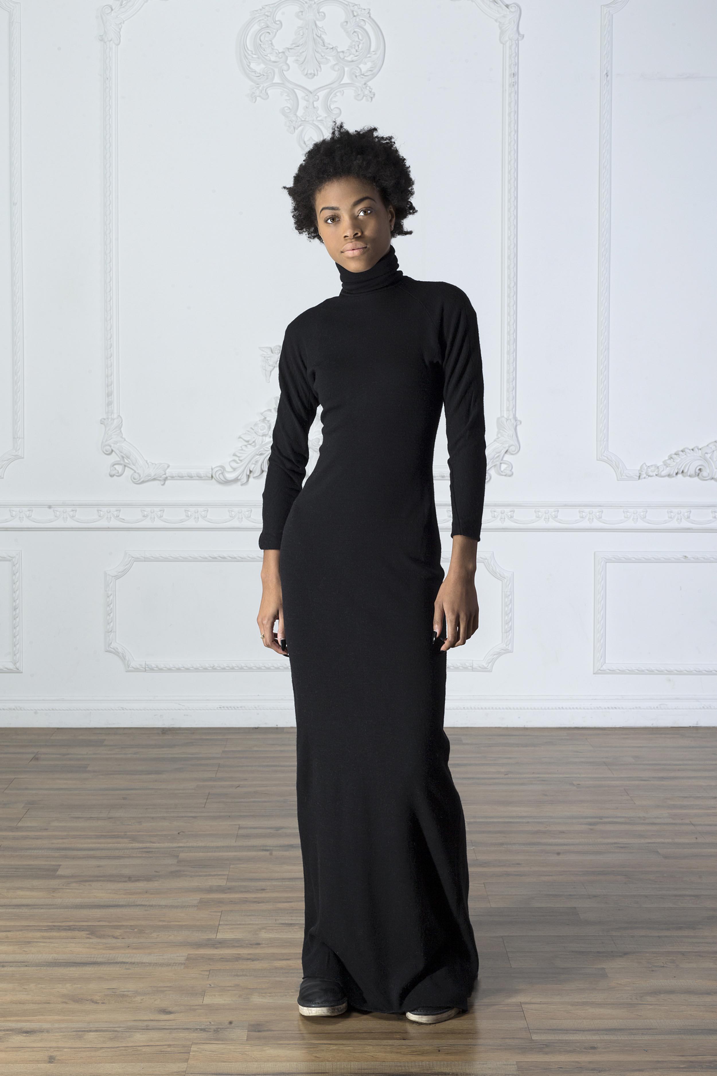 Turtleneck Dress 1 copy.jpg
