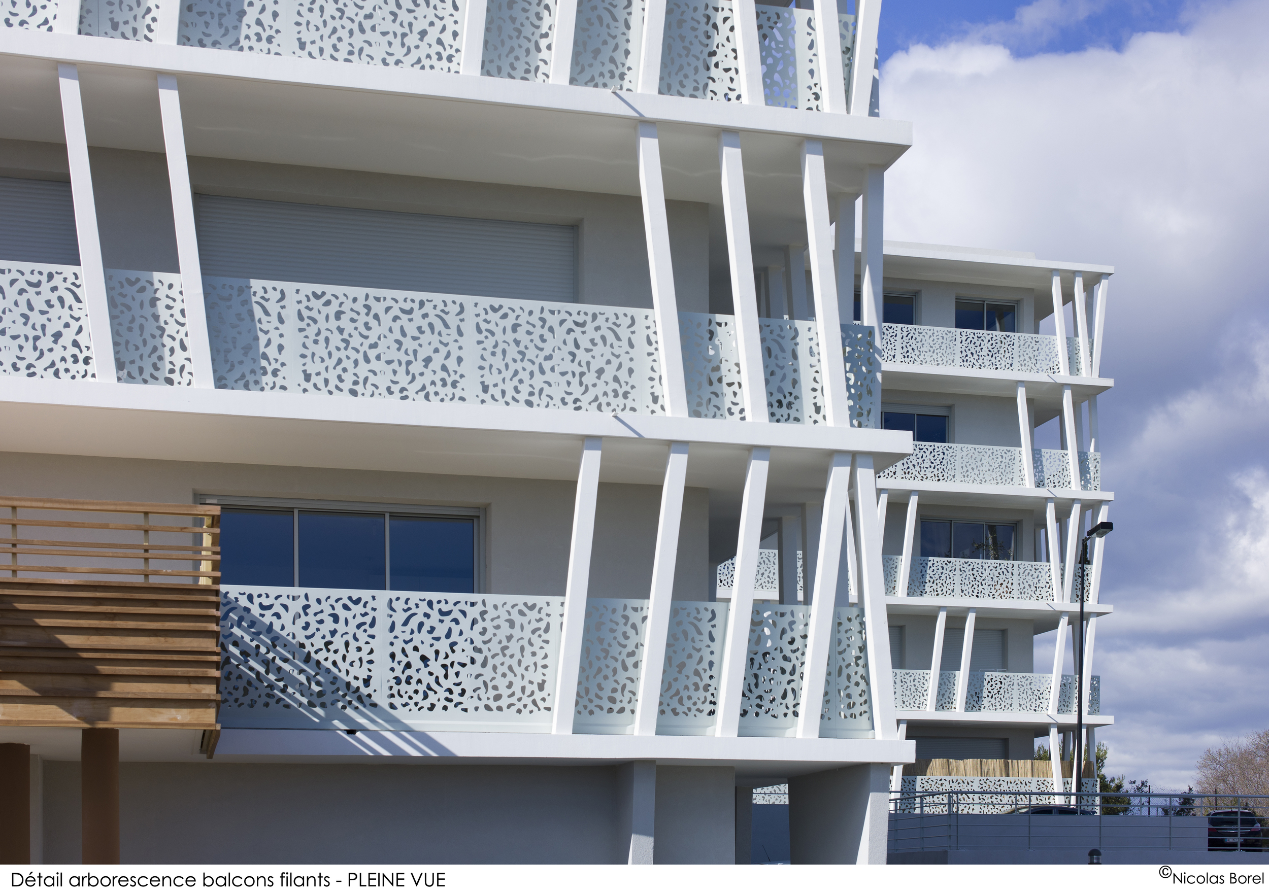 01_DETAIL ARBORESCENCE BALCONS FILANTS.jpg