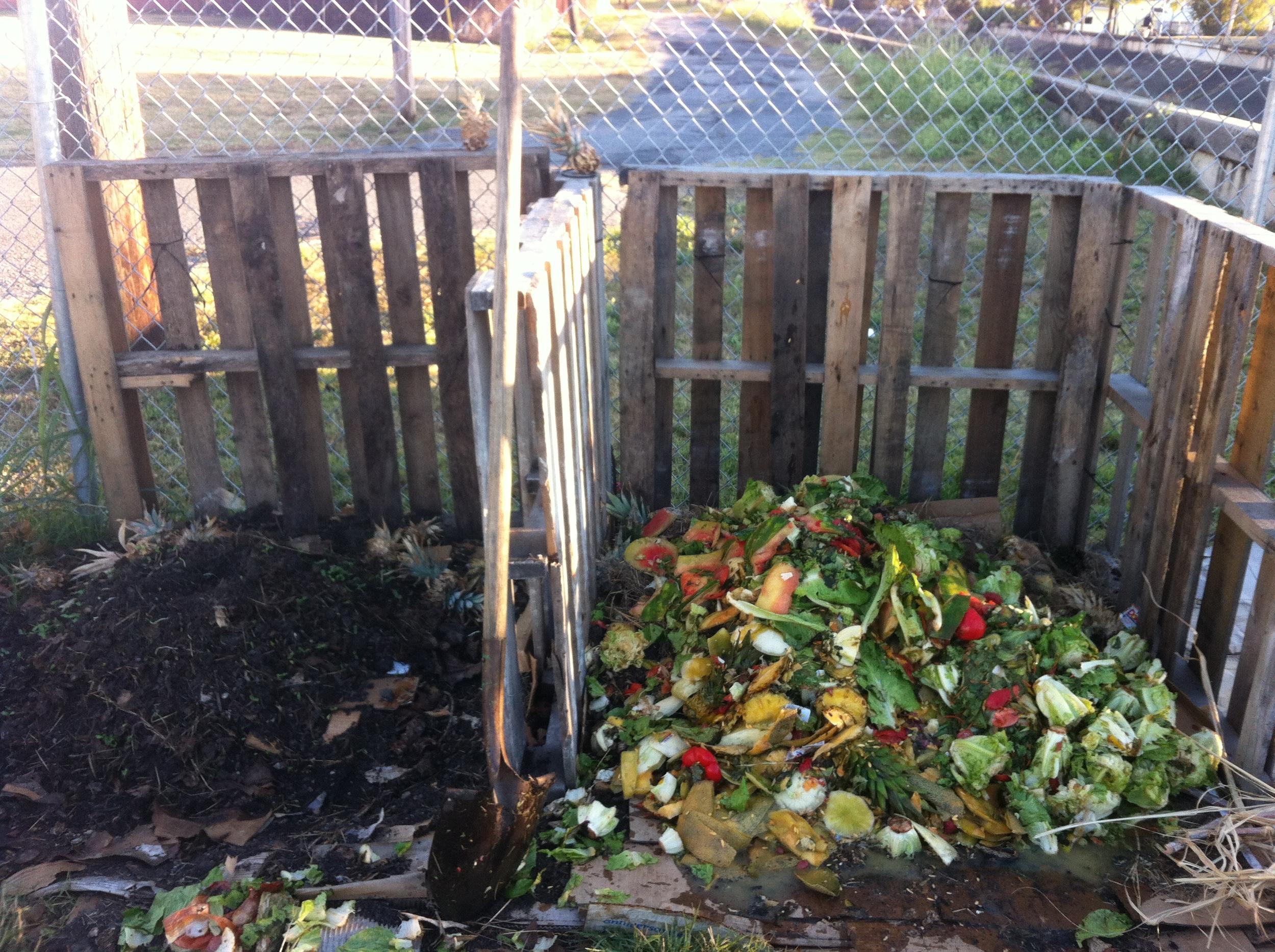 Compost 1.jpg