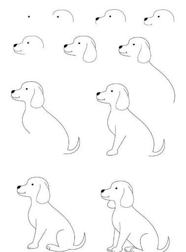 dog+drawing.jpg