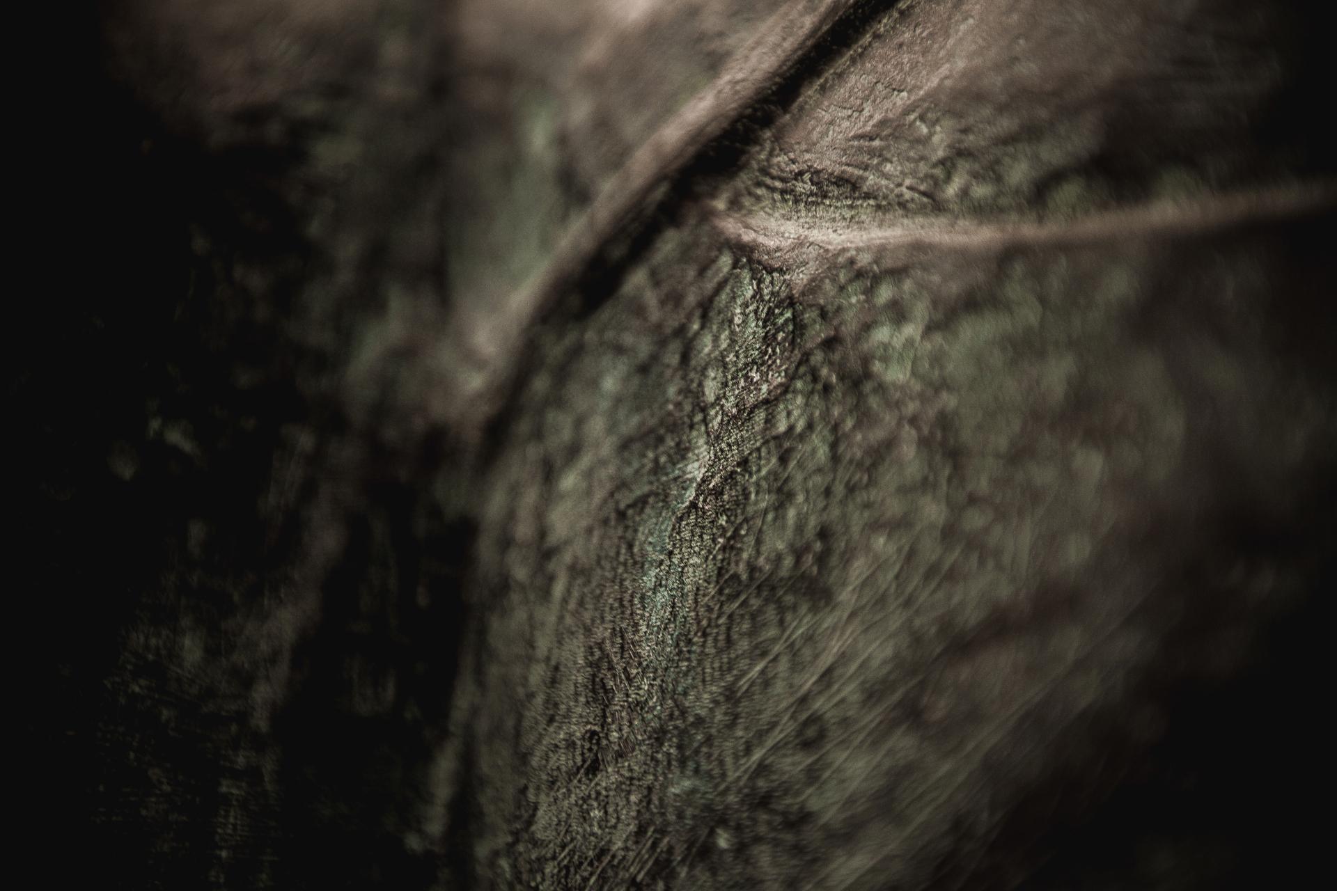 Fotografia-Photography-Alberto-Carneiro-Escultura-Sculpture-Bronze-Madeira-Wood-Basalto-Basalt-Fabrica-Santo-Thyrso-Texturas-Textures-Parcial-Partial-bonjourmolotov-Andre-Gigante-01