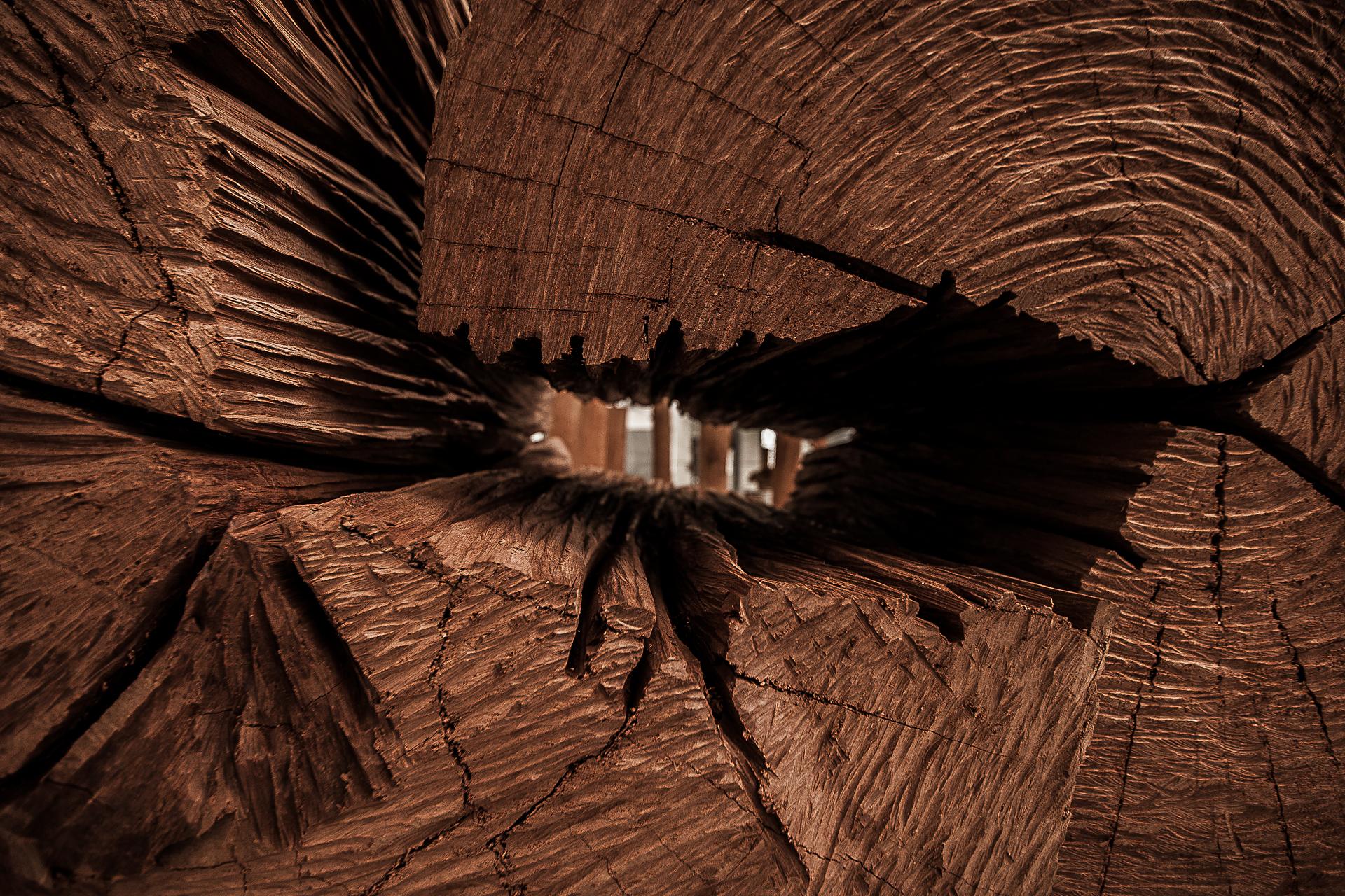 Fotografia-Photography-Alberto-Carneiro-Escultura-Sculpture-Bronze-Madeira-Wood-Basalto-Basalt-Fabrica-Santo-Thyrso-Texturas-Textures-Parcial-Partial-bonjourmolotov-Andre-Gigante-09