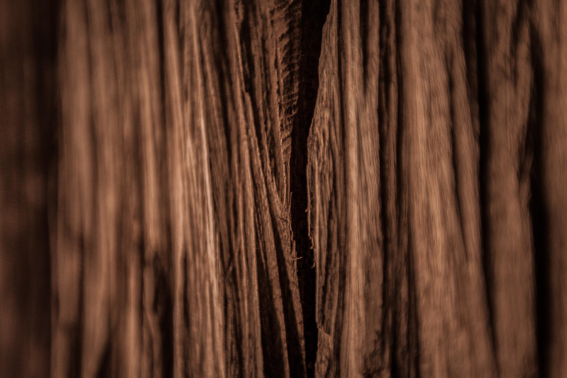 Fotografia-Photography-Alberto-Carneiro-Escultura-Sculpture-Bronze-Madeira-Wood-Basalto-Basalt-Fabrica-Santo-Thyrso-Texturas-Textures-Parcial-Partial-bonjourmolotov-Andre-Gigante-17