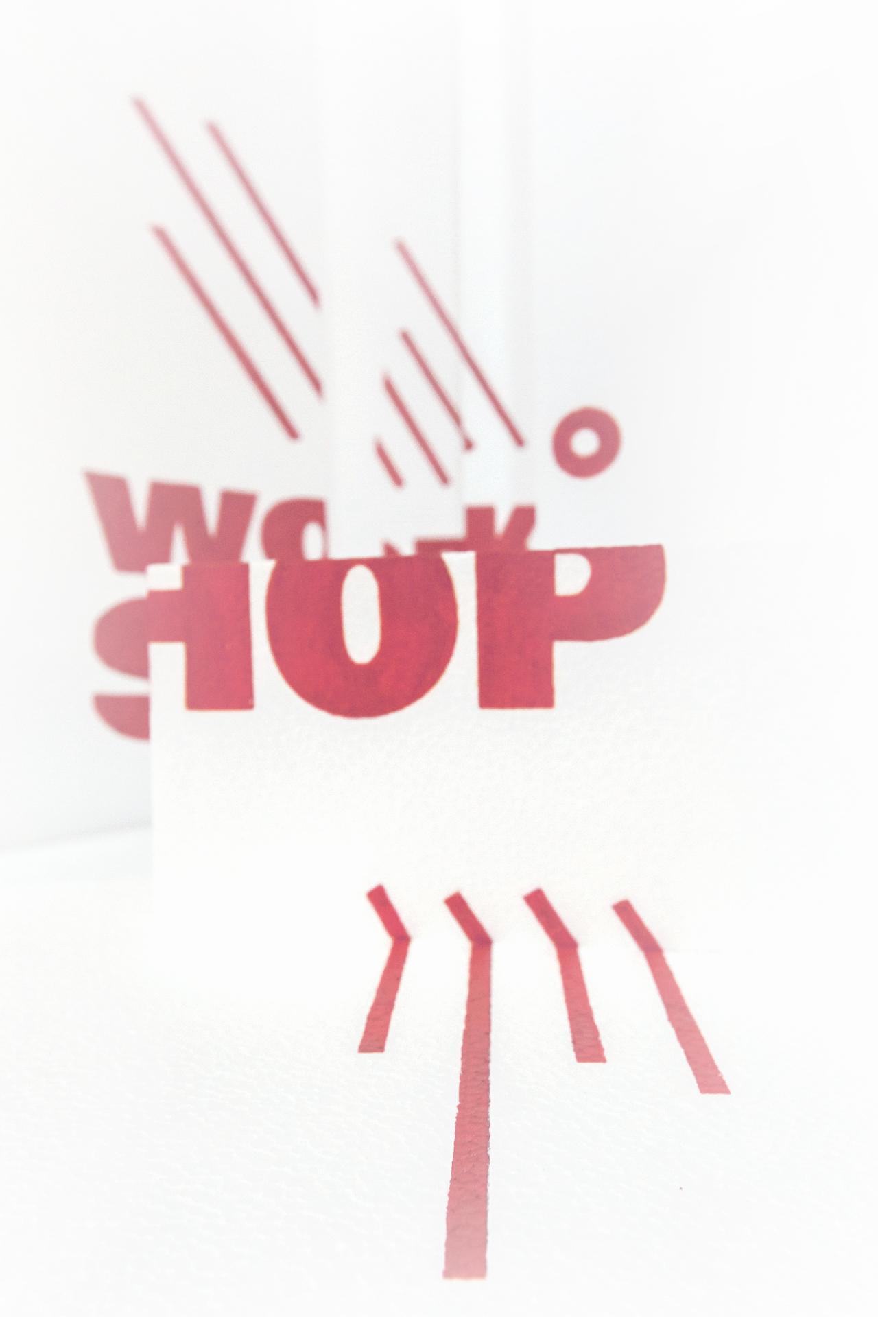 WORKSHOP ESAD BIENAL EXPERIMENTA DESIGN 2015