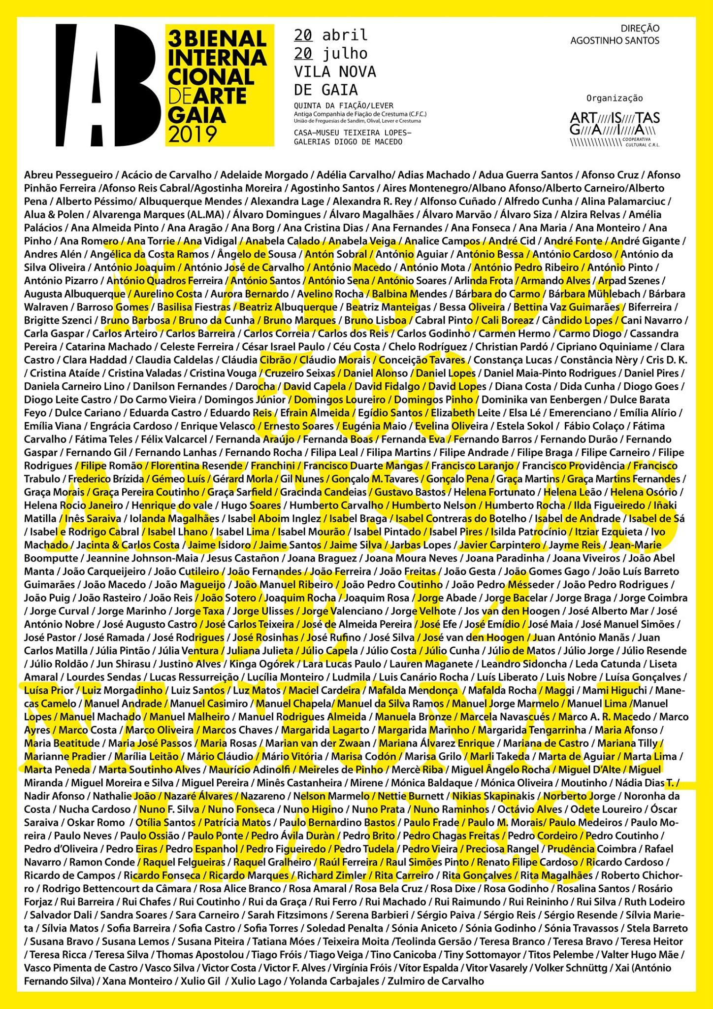 Bienal Internacional de Arte Gaia bonjourmolotov Andre Gigante.jpg