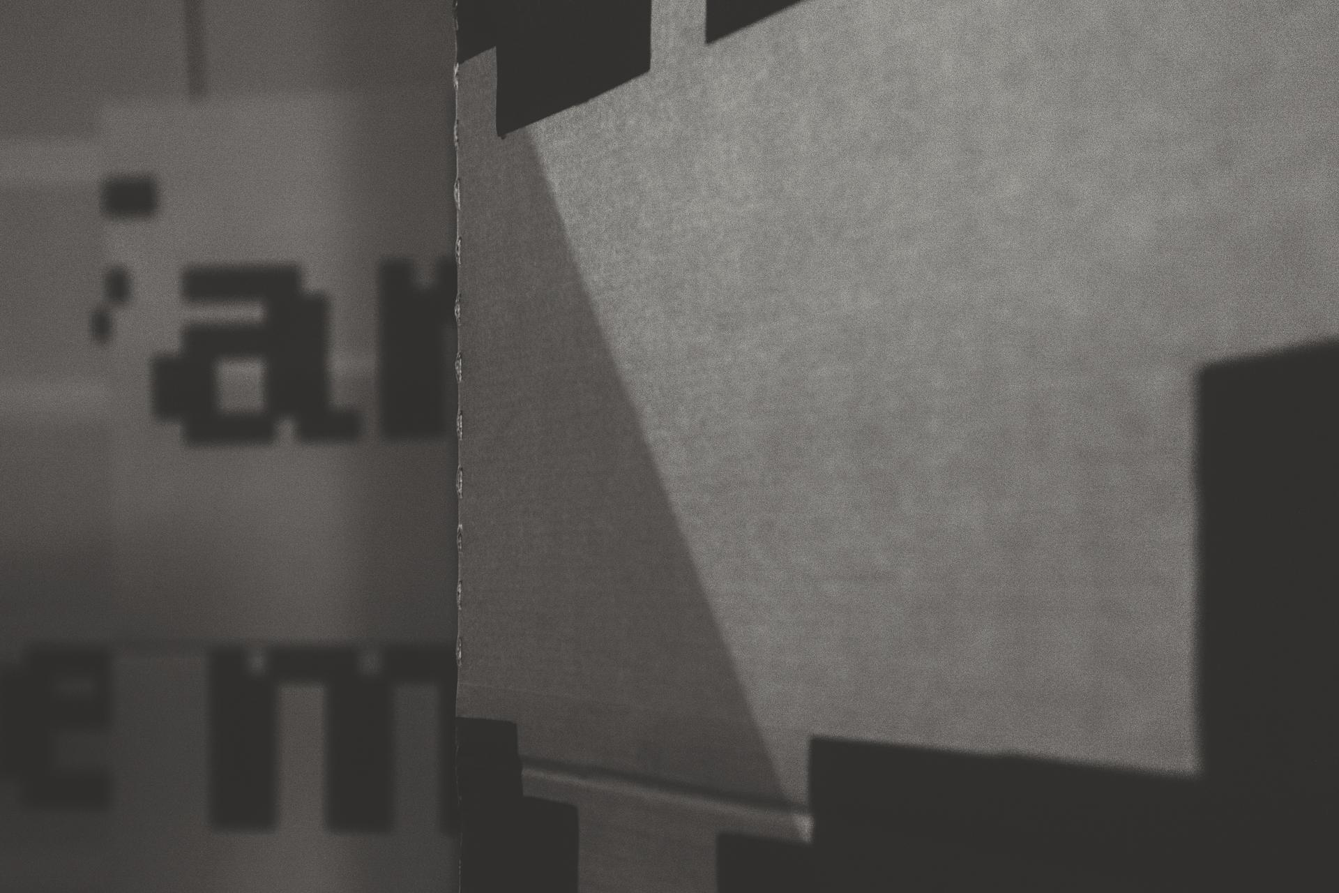 _MG_1703-Editar-Editar+N.jpg