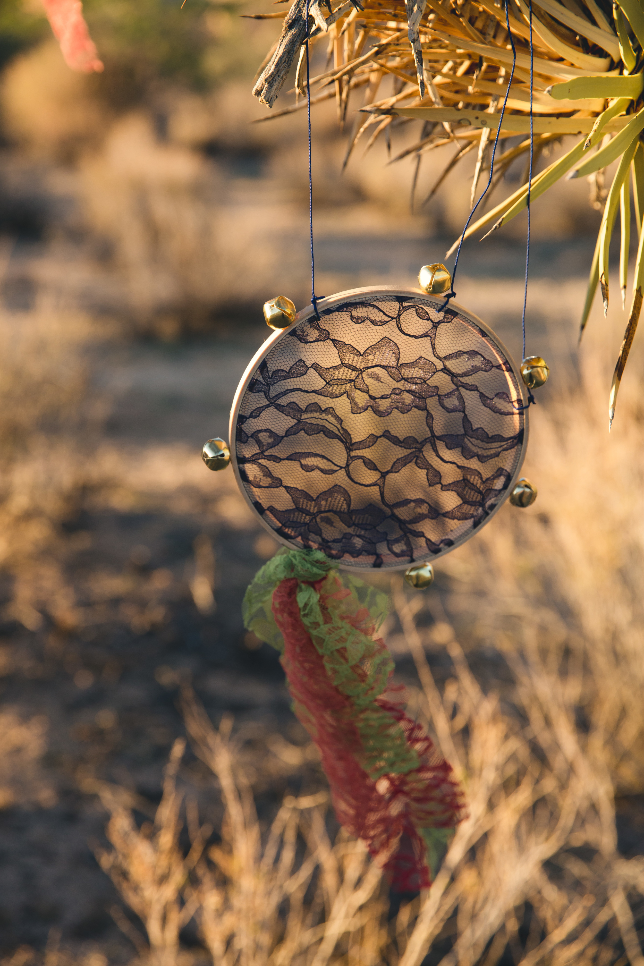 Joshua Tree Styled Shoot 00186.JPG