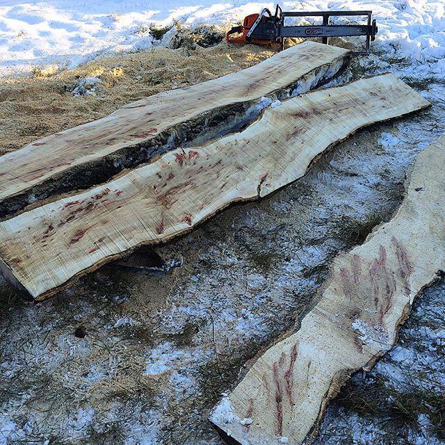 Milling live edge maple slabs