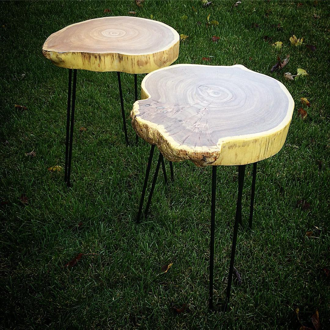 Elm disc end tables with black classic hairpin legs