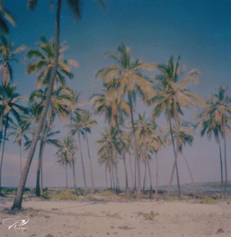 ©Raina Stinson Photography-Hawaii.jpg