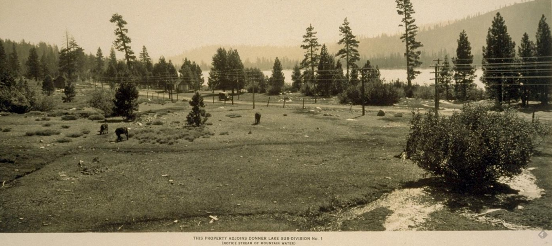"Click photo for larger view. Title: ""This Property adjoins Donner Lake Sub-division No.1 (Notice stream of mountain water)"""