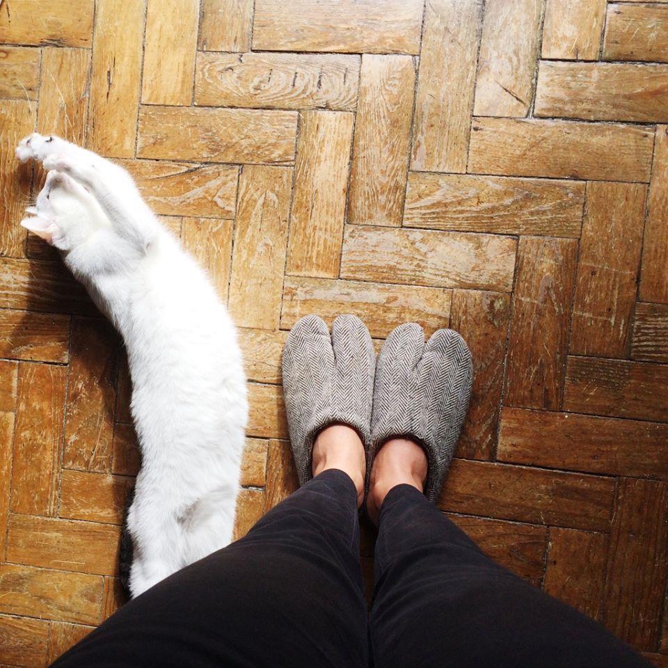 yoga gata e lembrança do japão.jpg