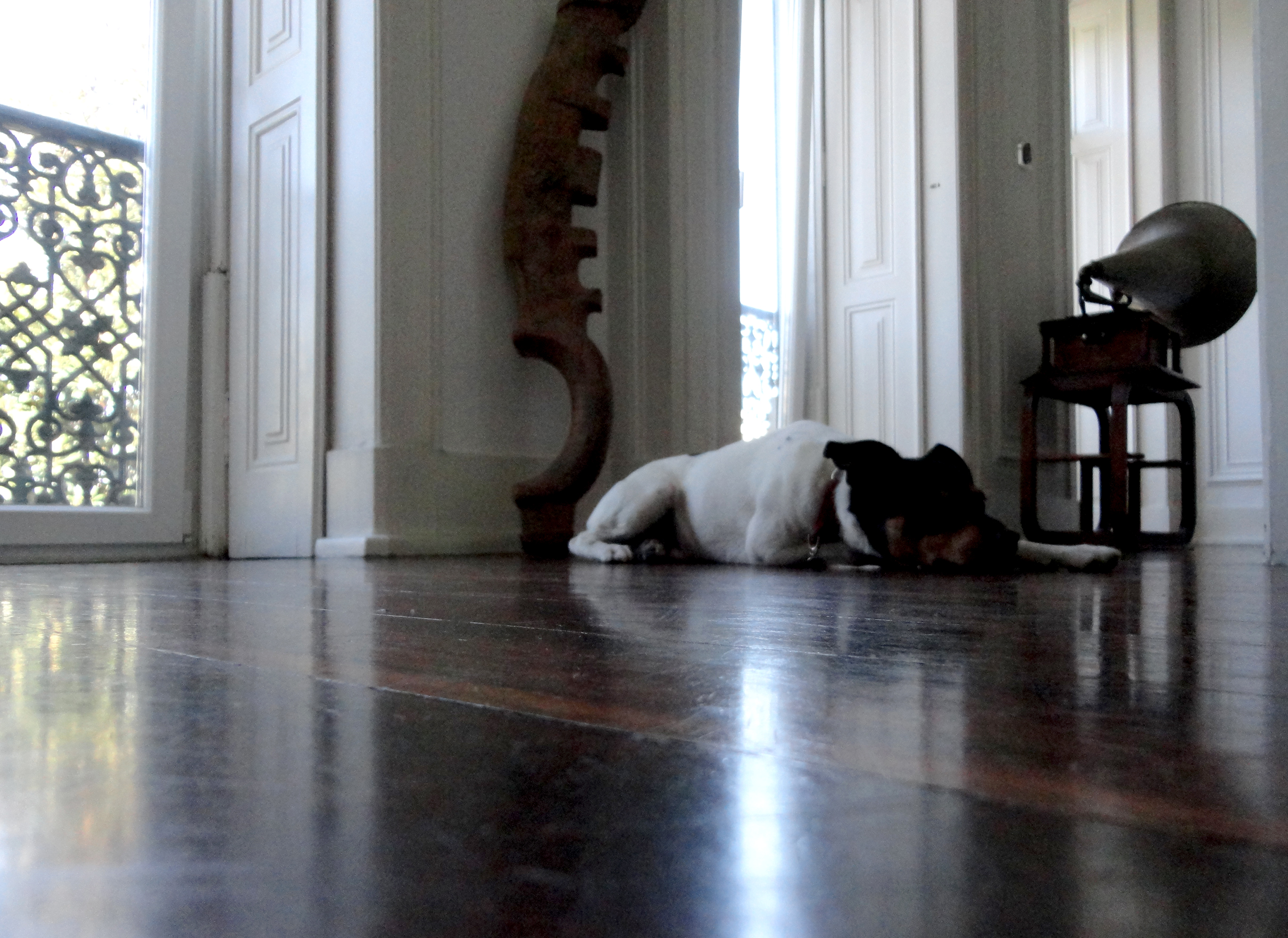 Na sala entra quem o Choné acha que pode. Eu pude!
