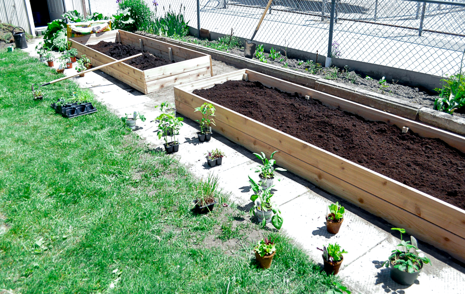 WithCare-Raised Beds-0490.jpg