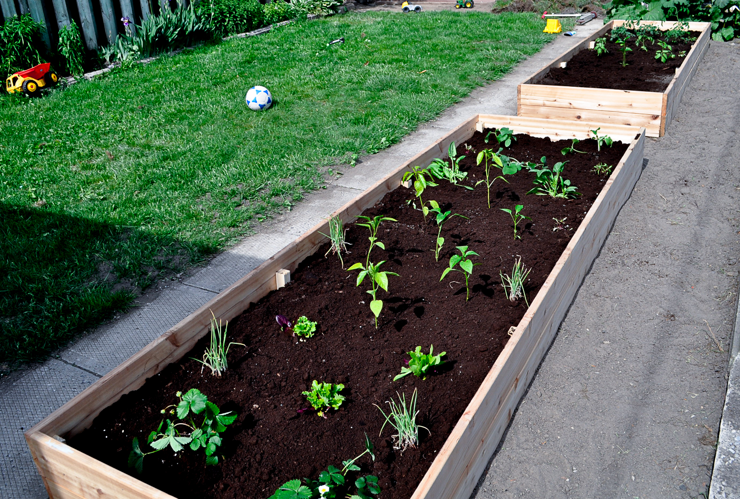 WithCare-Raised Beds-0526.jpg