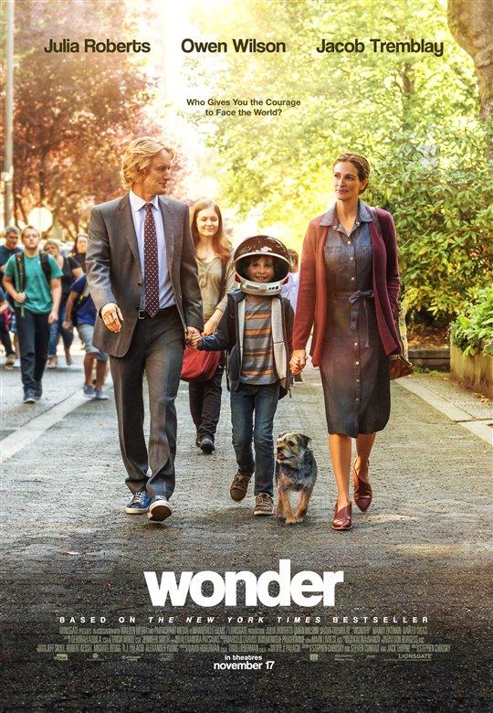 wonder-121473.jpg