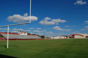 natural grass football field vs synthetic turf.jpg